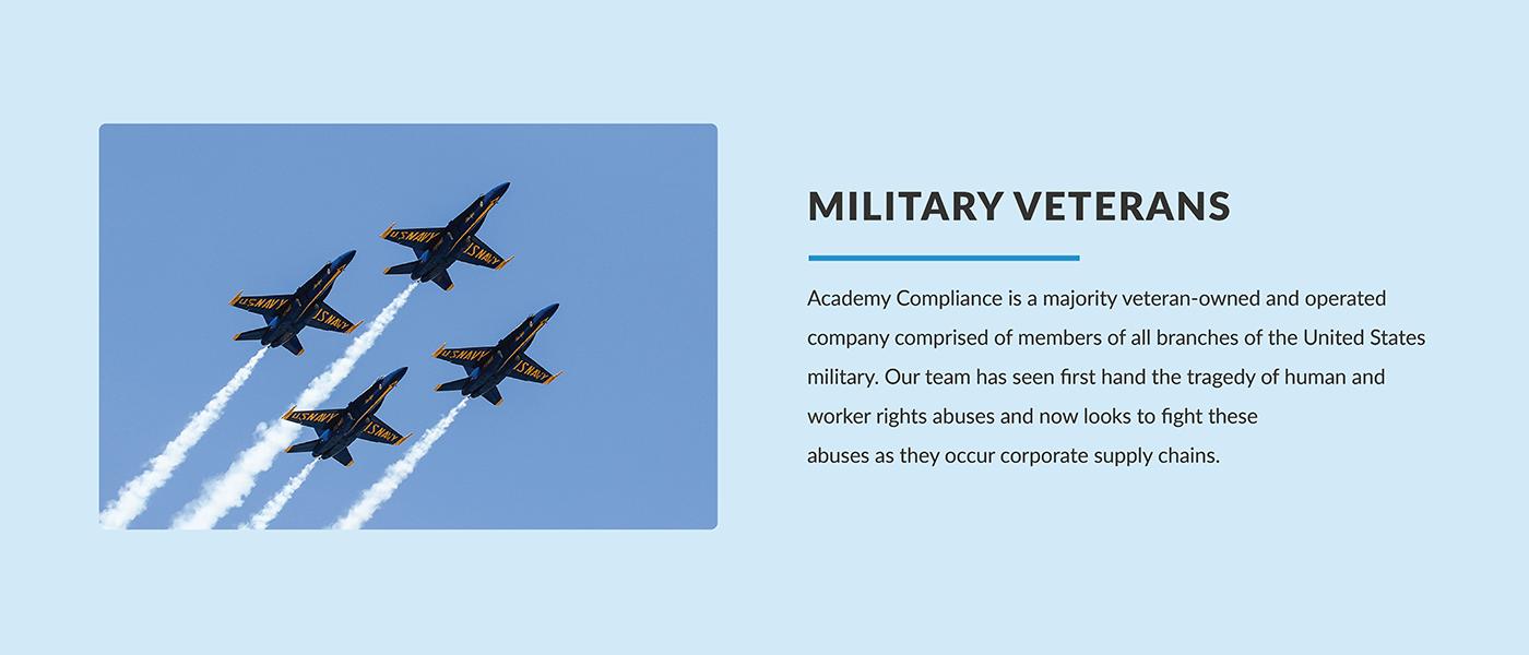 1. Military Veterans_V3